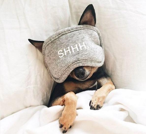 25 kalmerende dingen die je helpen om in slaap te vallen
