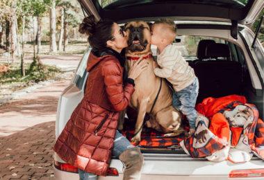De verrassende gezondheidsvoordelen van het hebben van een hond of kat