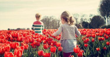 Waarom broers en zussen stoppen met praten