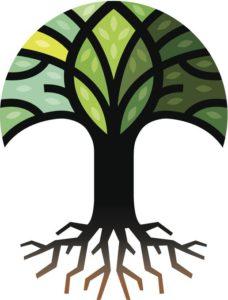 cly6u8.6auhdh.im .lg  228x300 - Psychologen zeggen dat de boom waar je oog naar toe wordt getrokken je dominante karaktereigenschap onthult
