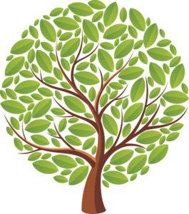 lk3yk4.clst8f.im .lg  265x300 - Psychologen zeggen dat de boom waar je oog naar toe wordt getrokken je dominante karaktereigenschap onthult