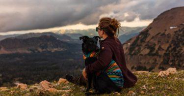 introvert dieren voor elkaar gemaakt